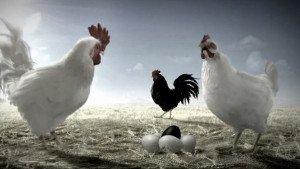 FIX DARK – Chicken