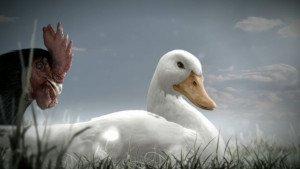 Fix Dark / Duck