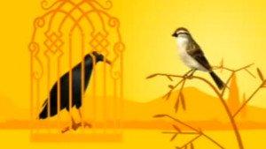 Q συμβόλαιο ελευθερίας – Μάϊνα